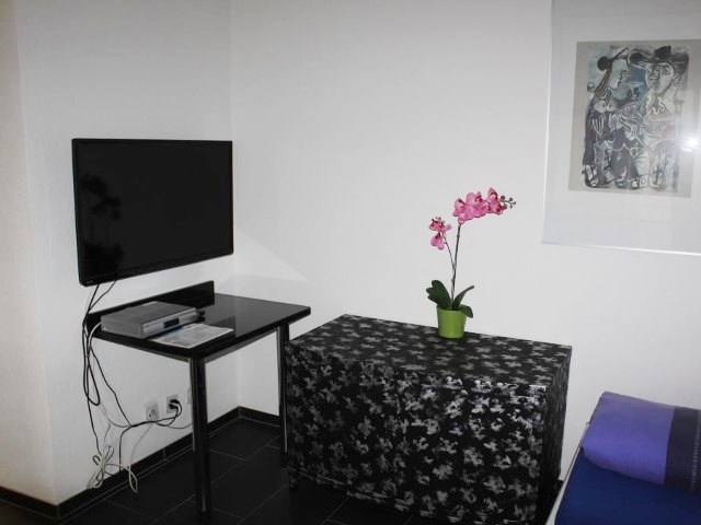 Copyright © 2007   2012 Seefeld Appartement Zürich Inc. All Rights Reserved    Hosted By TRENDY ART
